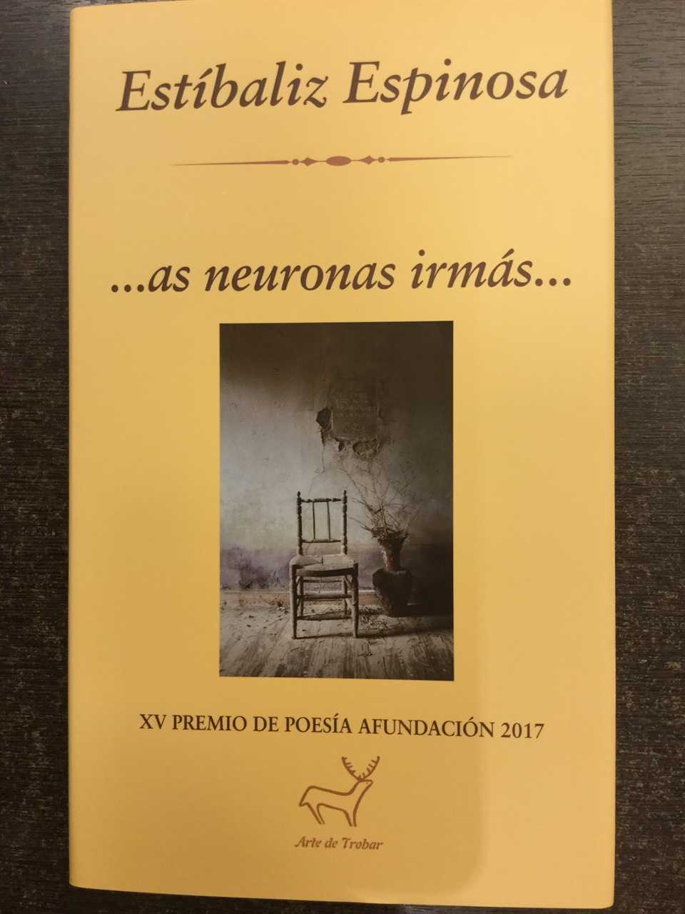 Imagen de As Neuronas Irmas