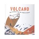 Imagen de Volcano, The Wild Horse From The Island Of Sálvora