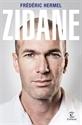 Imagen de Zidane