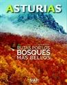 Imagen de ASTURIAS.RUTAS POR LOS BOSQUES MAS BELLOS