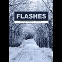 Imagen de FLASHES